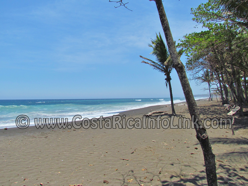 playa ostional costa rica map Ostional Beach Costa Rica Tourist Information playa ostional costa rica map