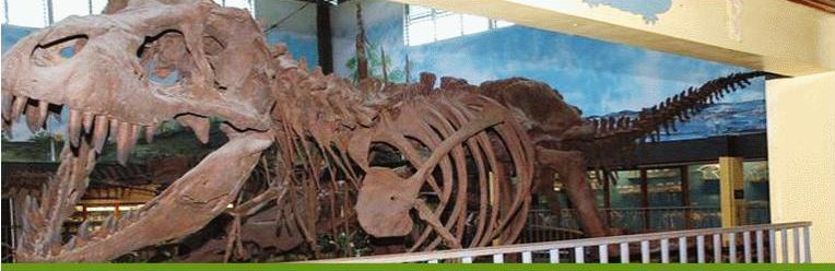 Dinosaurio del Museo de Ciencias Naturales La Salle en Costa Rica