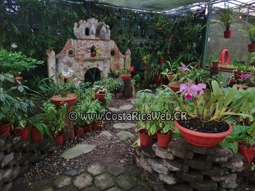 Jard n bot nico lankester costa rica for Como ir al jardin botanico