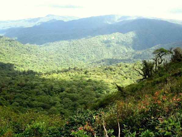 Refugio de Vida Silvestre Peñas Blancas, Costa Rica