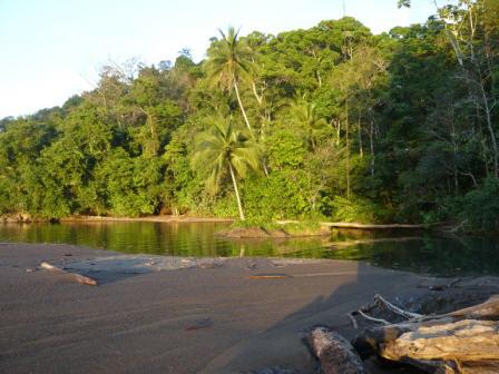 Playa del Refugio Nacional de Vida Silvestre Punta Río Claro, Costa Rica