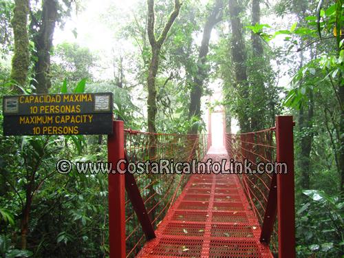 Puentes Colgantes en la Reserva Biológica de Bosque Nuboso Monteverde en Puntarenas, Costa Rica