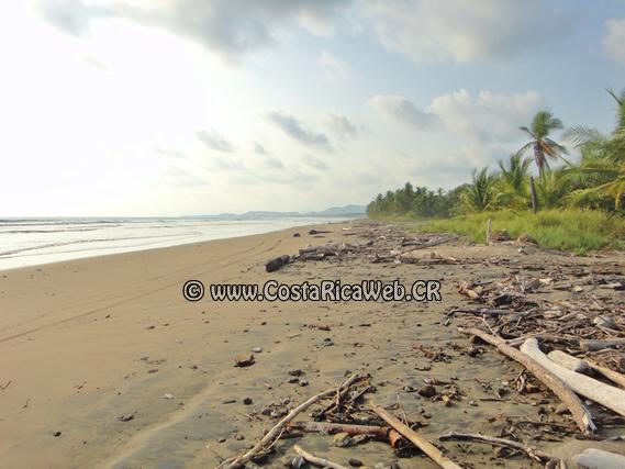Playa Arío Costa Rica
