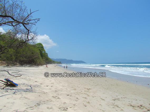 Santa Teresa Costa Rica  city photos gallery : Playa Santa Teresa Costa Rica Costa Rica