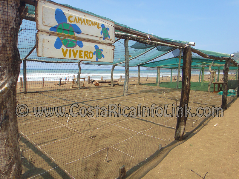 Playa Camaronal Costa Rica