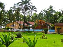 Piscina del Hotel MinOtel Las Palmas, Punta Uva, Puerto Viejo deTalamanca, Limón, Costa Rica