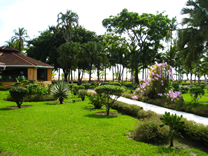 Restaurante del Hotel MinOtel Las Palmas, Punta Uva, Puerto Viejo deTalamanca, Limón, Costa Rica