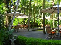 Hotel Le Caméléon Costa Rica en Cocles