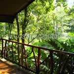 Vista Habitacion Hotel Rafiki Safari Lodge Costa Rica