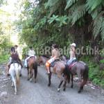 Tour a Caballo Hotel Rafiki Safari Lodge Costa Rica