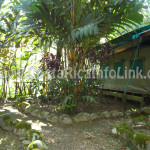 Room - Rafiki Safari Lodge Hotel Costa Rica