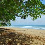 Beach - Almonds & Corals Hotel Costa Rica